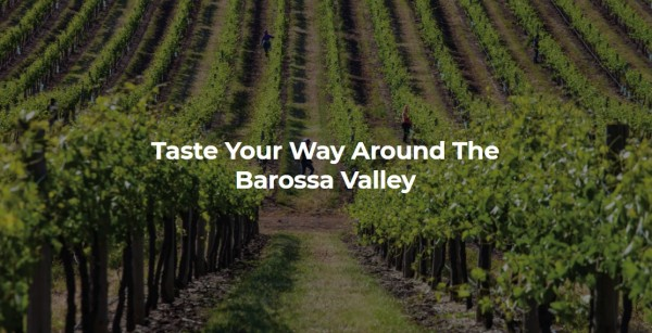 Taste your way around the Barossa Valley